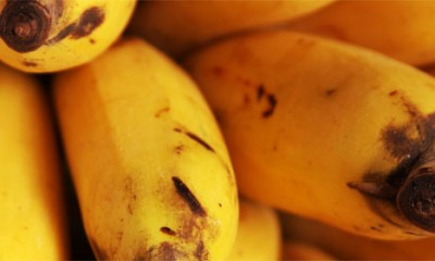 Banana-šejk