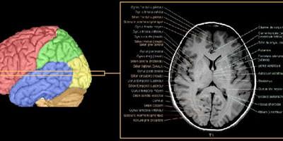 Mašina za gledanje čovekovih misli