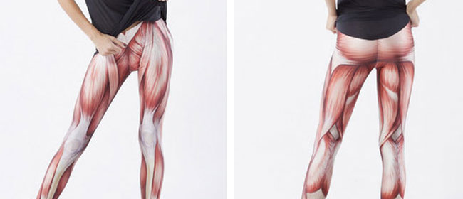 Anatomske helanke