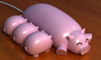 USB svinjice