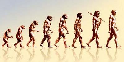 Darvinove beleške na internetu  %Post Title