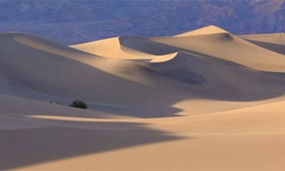 Kako da preživite pustinju  %Post Title