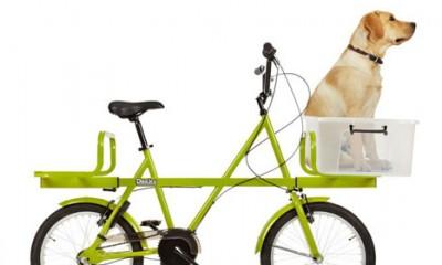 Najbolji bicikl na svetu
