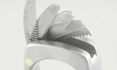 Jedini prsten koji želimo