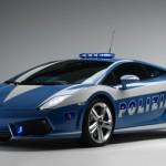 Policijski san