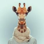 Zoo portreti