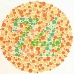 Koji broj vidite na slici?