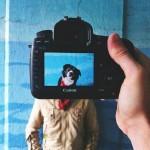 Preslatki pseći portreti
