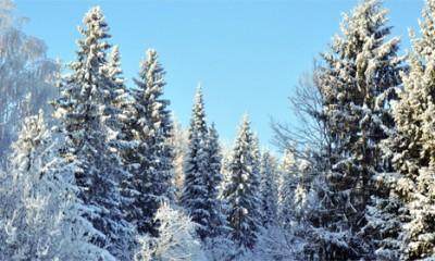 Zahlađenje i novi sneg stižu u Srbiju za...