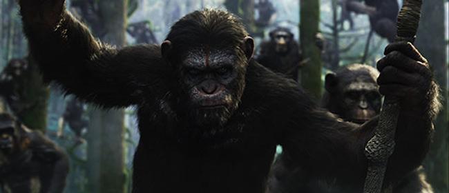 Planeta majmuna - Revolucija