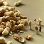 Čudesne minijature