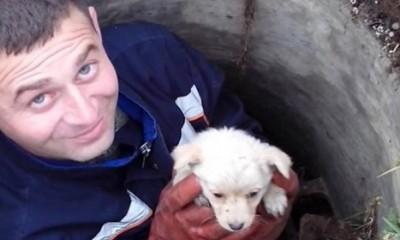 Kako je Sara spasila štene u Beogradu