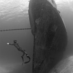 Najbolje podvodne fotografije  %Post Title