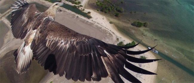 Najbolje fotografije iz vazduha