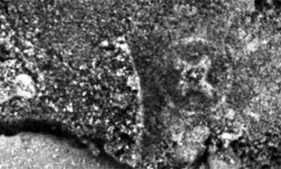 NASA snimia krst u krugu na Marsu  %Post Title