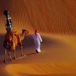 Google snima pustinju sa kamile