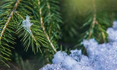 Prvi sneg stiže u Srbiju