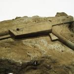 Moderni fosili