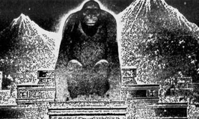 Grad Boga majmuna ipak postoji?