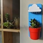 Oblak za biljku
