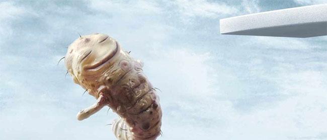 Ubijte bakterije bez vode