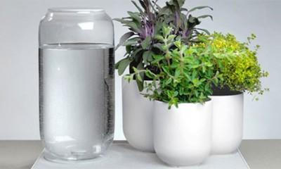 Saksije za ubice biljaka