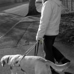 GPS za pse-vodiče