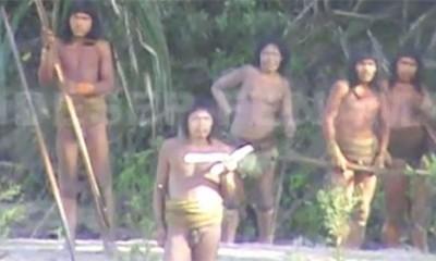 Peru će uspostaviti kontakt sa izolovanim plemenom u Amazoniji  %Post Title