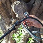 Čovek svira na drvetu  %Post Title