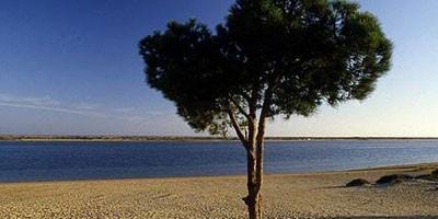 Najlepše plaže Costa de la Luza  %Post Title