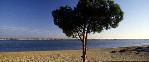 Najlepše plaže Costa de la Luza