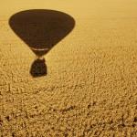 329 balona na nebu
