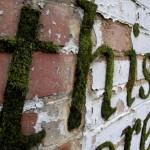 Ekološki grafiti