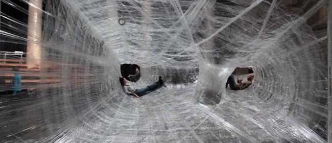 Džinovska paukova mreža