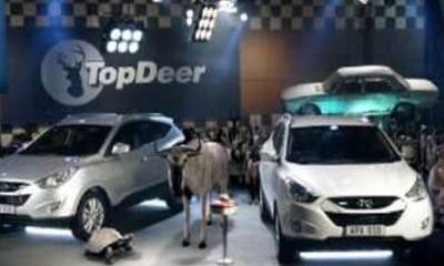 Šala na račun emisije Top Deer...pardon Top Gear