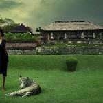 Foto Indonezija  %Post Title