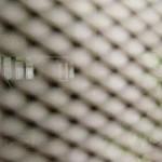 Ženski zatvor i umetnost  %Post Title