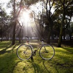 Ponovo bicikl od bambusa  %Post Title
