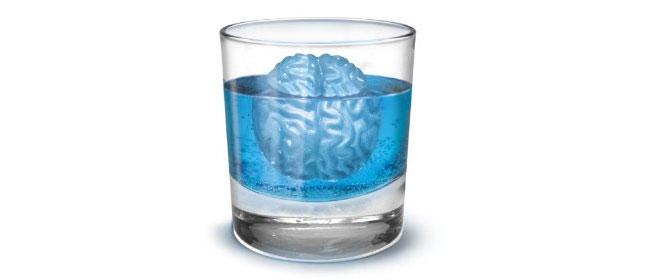 Led kao mozak