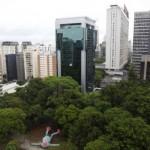 Džinovski majmun u Brazilu