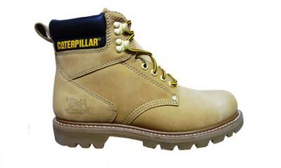 Caterpillar za zimu 2011.  %Post Title