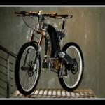 Zver od bicikla  %Post Title