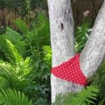 Seksi drveće