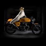 Ducati motori i golo telo