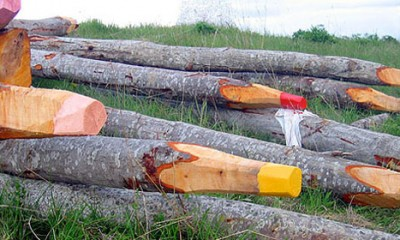 Džinovske drvene bojice