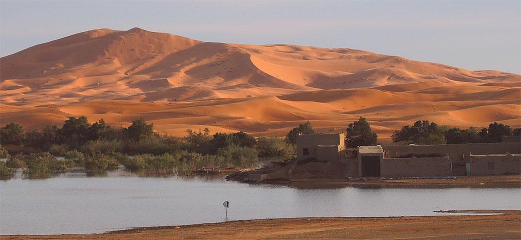 Slika: Sahara nije bila pustinja pre samo 5.000 godina