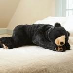 Medved u kome možete da spavate  %Post Title