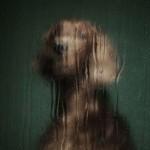 Portreti napuštenih pasa