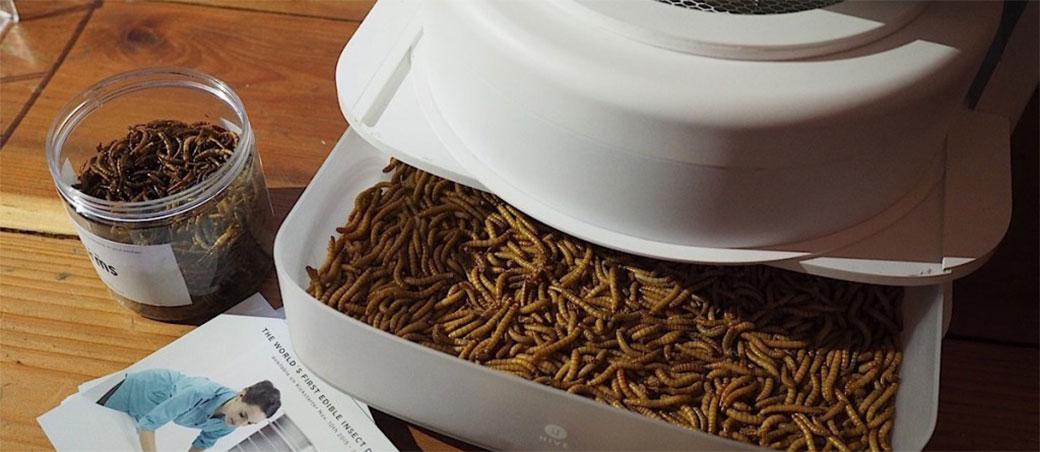 Najzad možete da imate svoju farmu crva