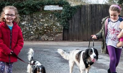 Vlasnici vole pse podjednako kao decu?  %Post Title